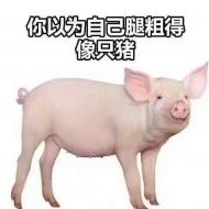猪腿都比你细