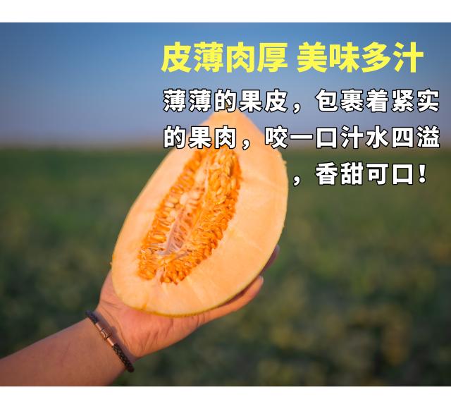 默认标题_手机海报_2019.08.12 (1).png