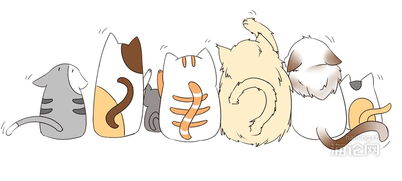摄图网_400223182_一群猫的背影(企业商用).jpg